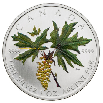 SALE - 2005 SILVER MAPLE LEAF COLOURED COIN - BIG LEAF MAPLE