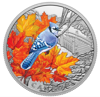 2021 $20 FINE SILVER COIN COLOURFUL BIRDS: BLUE JAY