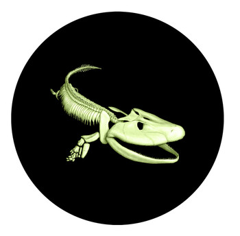2014 25-CENT GLOW IN THE DARK COLOURED COIN TIKTAALIK