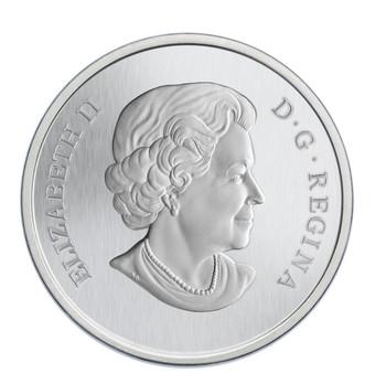 CENT彩色硬币荷花和豹纹