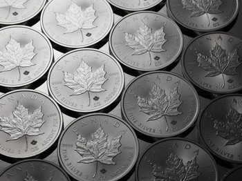 TUBE OF 25 1OZ. CANADIAN MAPLE LEAF SILVER COIN (RANDOM YEAR) (.9999 PURE BULLION)