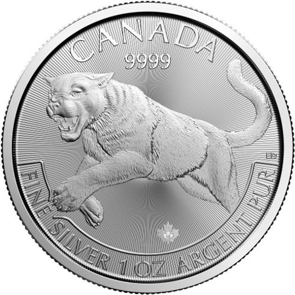1oz. 2016 CANADIAN COUGAR SILVER COIN