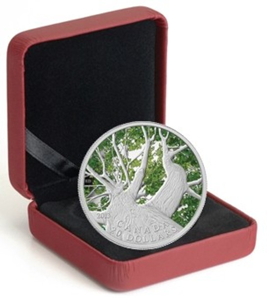 Canada 2013 $20 Pure Maple Leaf Autumn Canopy Pure Silver Color Proof