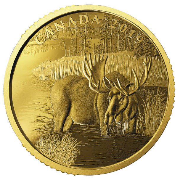 2019 $200 PURE GOLD COIN CANADIAN MOOSE