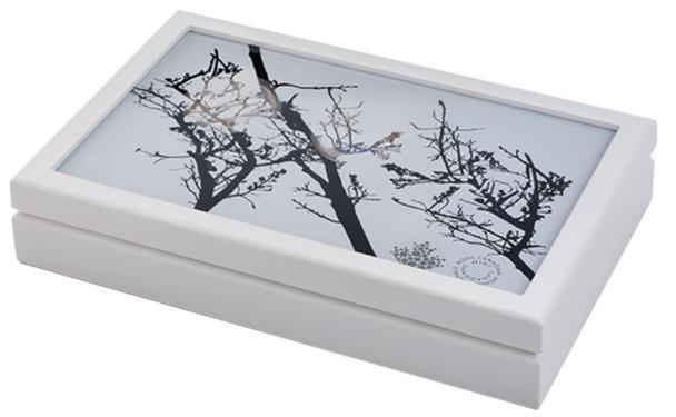 Subscription Box -NO COINS- 2016 $20 Fine Silver Landscape Illusion Presentation Case