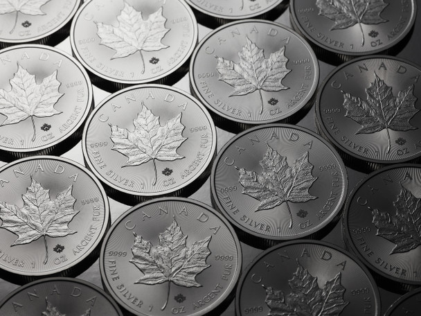 100 1OZ. CANADIAN MAPLE LEAF SILVER COINS (RANDOM YEAR) (.9999 PURE BULLION)