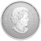 2021 $5 FINE SILVER COIN – MOMENTS TO HOLD 25TH ANNIVERSARY OF CANADA'S ARBOREAL EMBLEM