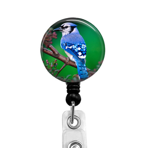 Blue Jay Bird  Badge Reel