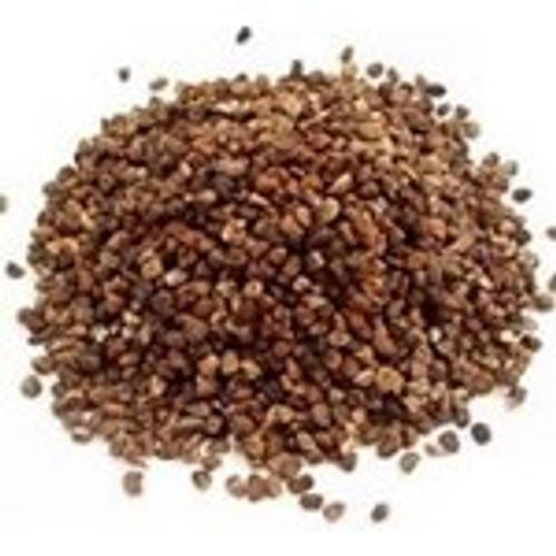 Cardamom Seed (SL29)