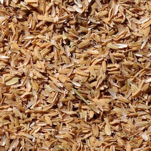 Rice Hulls | 1 lb (SL07)