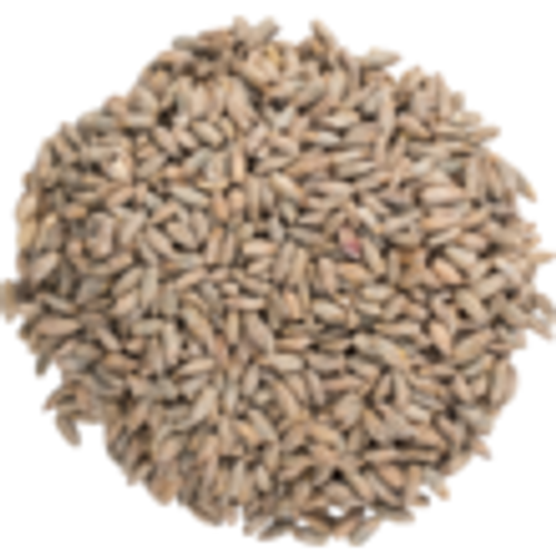 Rye - Malted 50lb Bag (SL22)