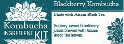 Blackberry w/ Black Tea Kombucha Ingredient Kit SCOBY Included