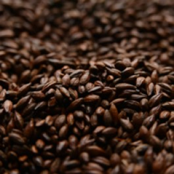 American Roasted Barley   1 lbBriess