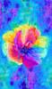 "Cotton Print Yarmulkes 24"" Anemone Flower Panel - MULTI"