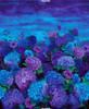 """Cotton Print Yarmulkes 36"""" Misty Hydrangea Panel - MIDNIGHT"""