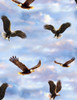 Cotton Print Yarmulkes Flying Bald Eagles - SKY