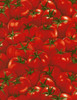 Cotton Print Yarmulkes Tomatoes - RED