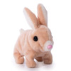 My Pet Bunny - Walking Toy with Sound