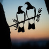 Kereru Pair Steel Art