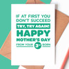 If At First You Don't Succeed Third Child Mother's Day Card