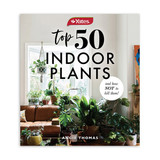 50 Indoor Plants & How Not To Kill Them