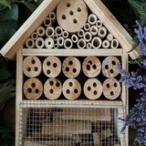 Large Bee & Insect House