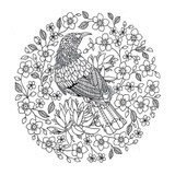 Lost in the Wilderness Colouring Book