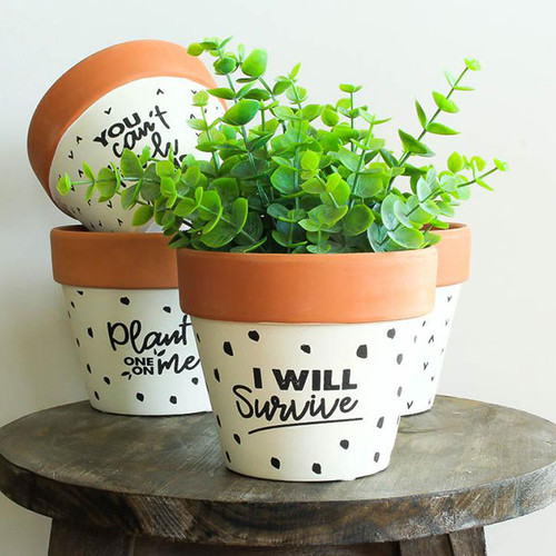 Plant Sayings Pots
