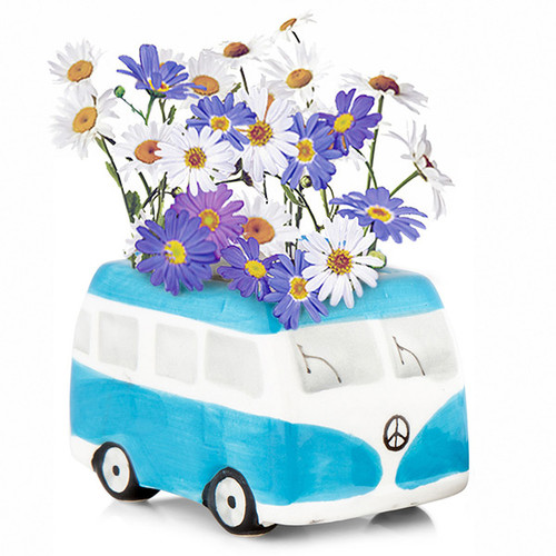 Flower Power Daisy Grow Kit