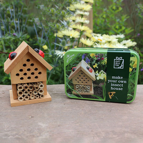 Apples to Pears Make Your Own Insect House in a Tin