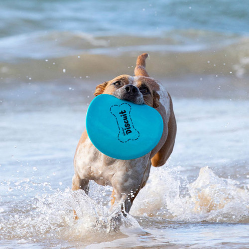 Waboba Discuit Flying Disc for Dogs