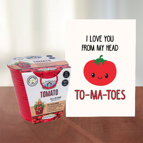 From My Head To-ma-toes - Tomato Grow Kit & Card