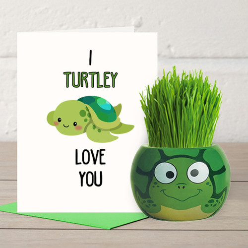 I Turtley Love You - Grass Hair Kit & Card