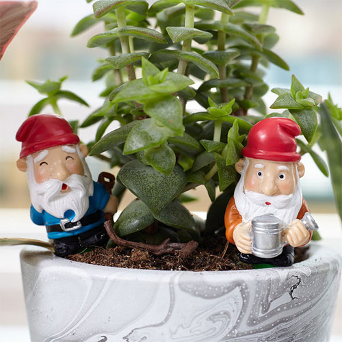 Mini Plant Pot Gnomes