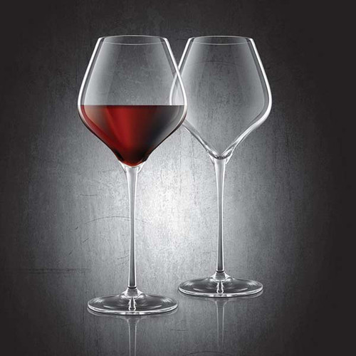 Burgundy Lead-Free Crystal Glasses - Set of 2