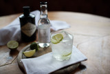 Original - Hendricks Gin with Slices of Lime