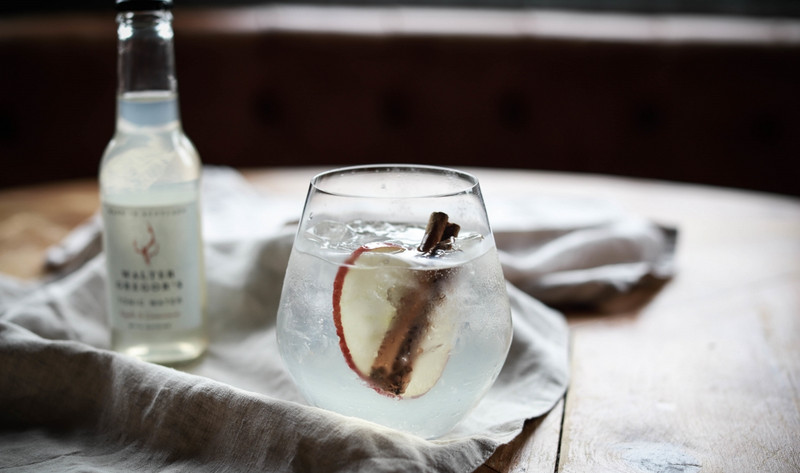 Apple & Cinnamon - Caorunn Gin with Dried Red Apple