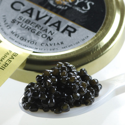 CAVIAR: Siberian Sturgeon - Farmed in the USA