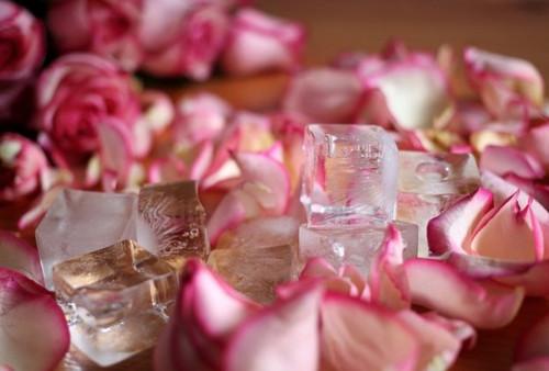 Rose / Lavender / Rosemary / Custom Hydrosol