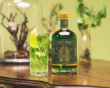 Non-Alcoholic Absinthe and Lemonade Mocktail Recipe | Lyre's