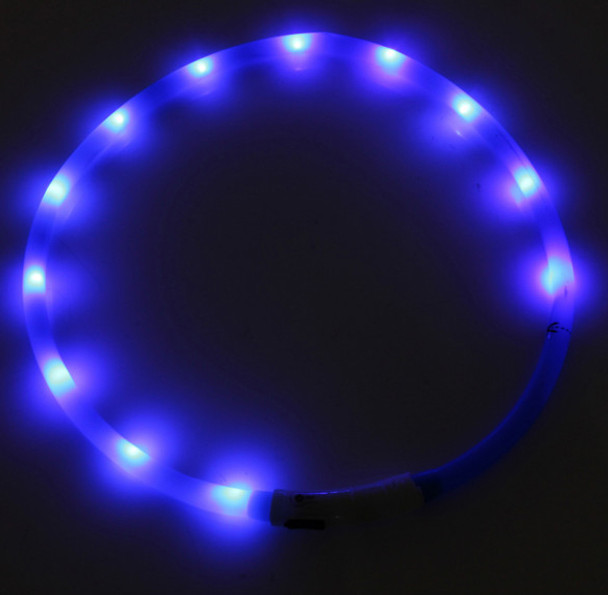 Blue USB Rechargeable LED Dog Collar