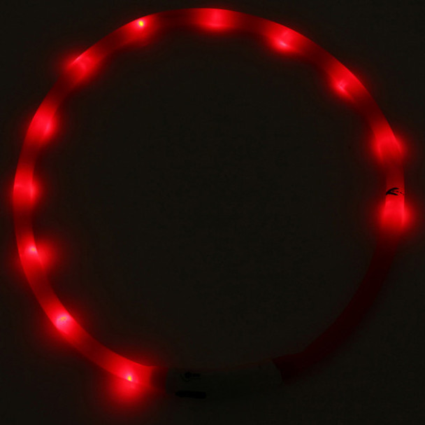 Red USB Rechargeable LED Dog Collar