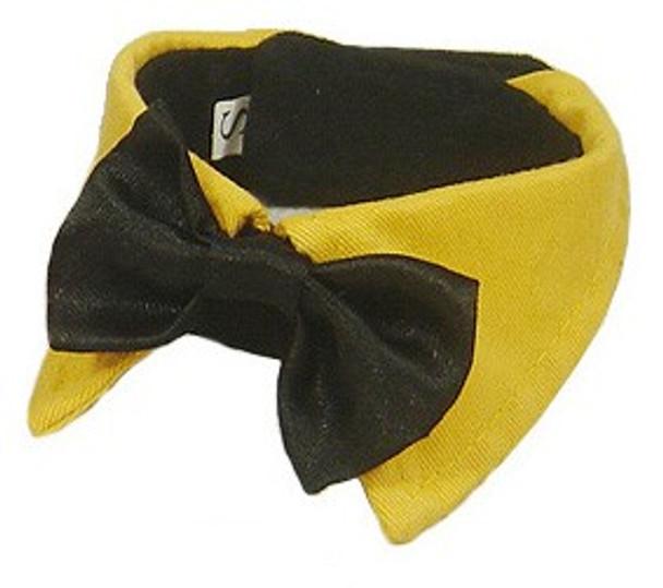 Yellow Bow Tie Dog Collar