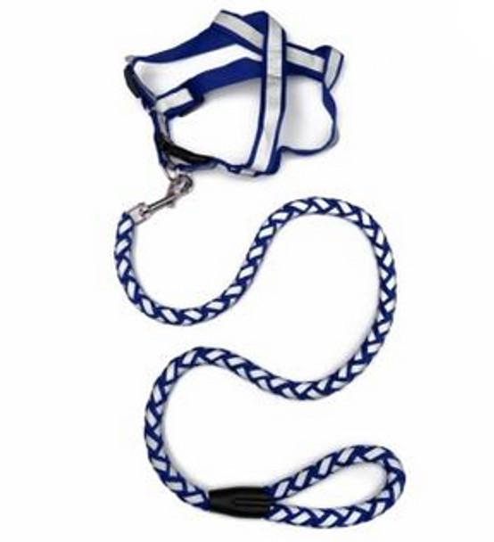 Blue Reflective Dog Harness & Lead Set