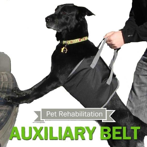 Black Dog Hoist Harness