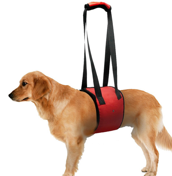 Red Dog Hoist Harness