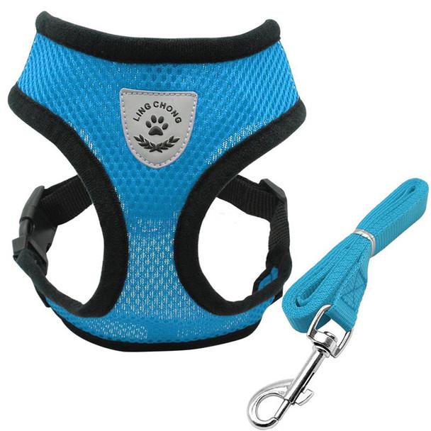 Blue Nylon Dog Harness & Lead Set
