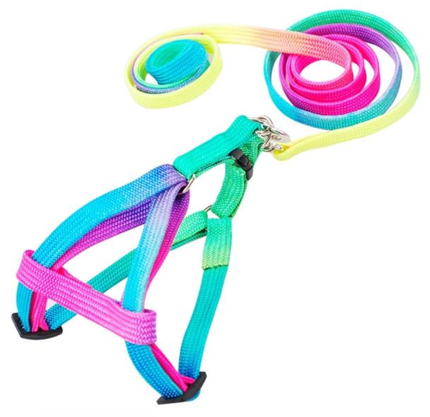 Rainbow Dog Harness & Lead Set