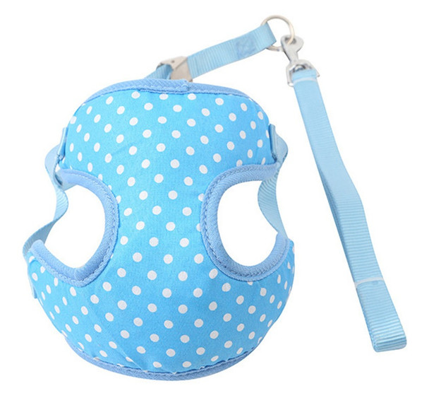 Blue Spotty Dog Harness & Lead Set