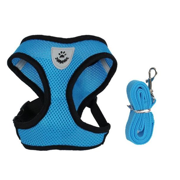 Blue Sports Dog Harness & Lead Set